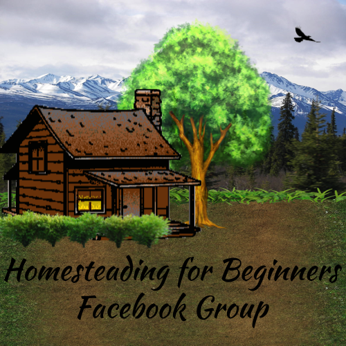 Homesteading FB